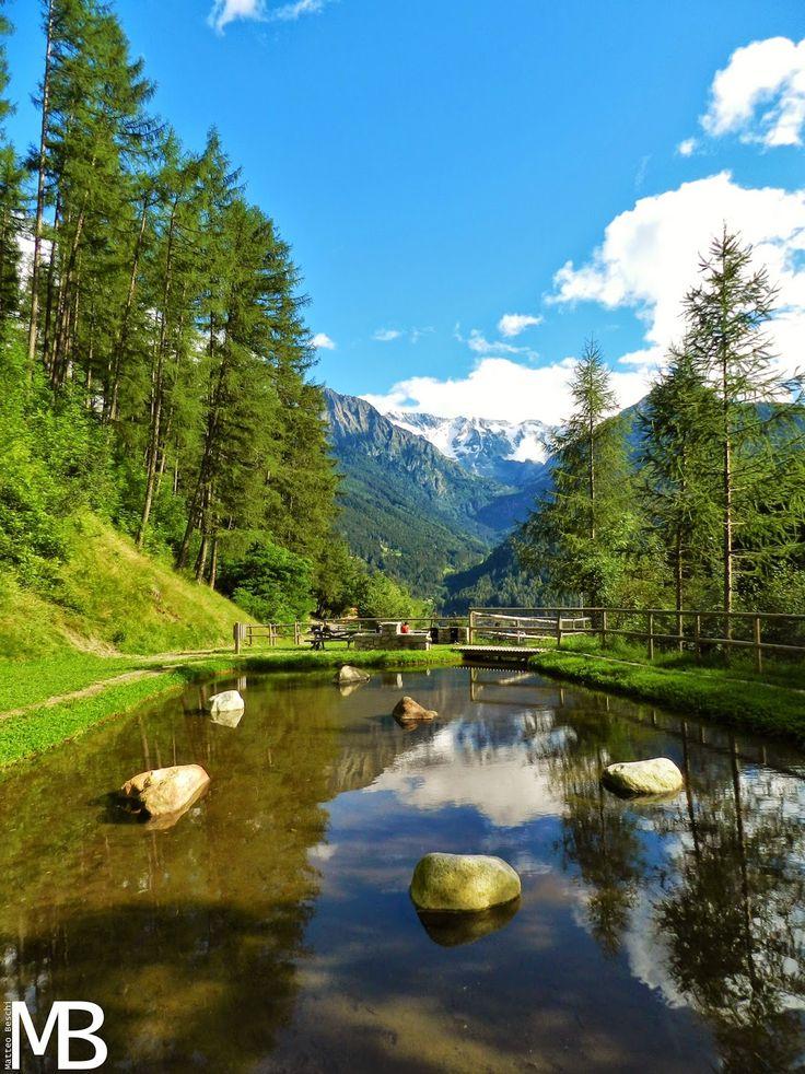 Riflesso in Val Grande - Reflection in Val Grande