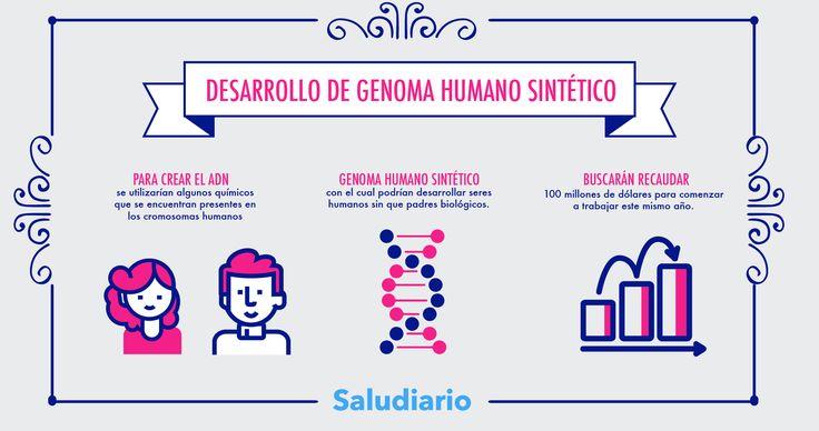 Resultado de imagen para genoma humano