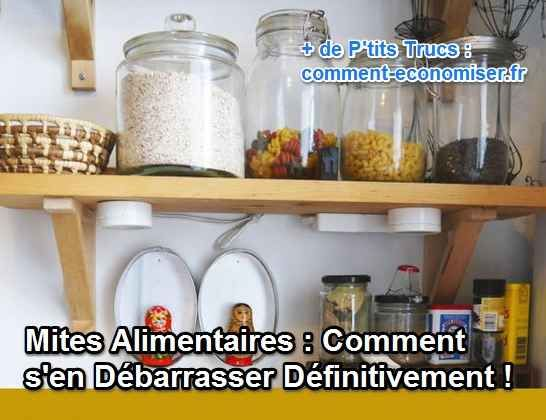 Mites Alimentaires : Comment S'en Débarrasser Définitivement !