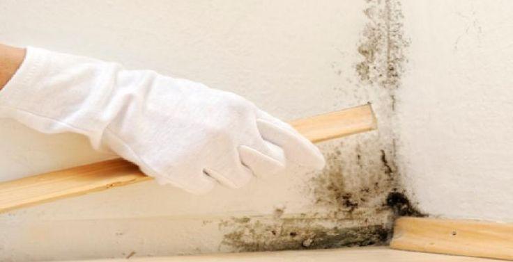 La meilleure façon de nettoyer et d'entretenir les planchers de bois franc et les boiseries