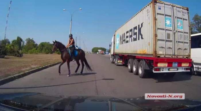 В Николаеве лошадь неожиданно вынесла всадницу на оживленную трассу (ВИДЕО) http://novosti-mk.org/events/6862-v-nikolaeve-loshad-neozhidanno-vynesla-vsadnicu-na-ozhivlennuyu-trassu.html  Днем в пятницу, 21 июля, в Николаеве, на выезде из Варваровки, в районе ипподрома, произошел инцидент, едва не приведший к серьезному ДТП.  #Николаев #Nikolaev {{AutoHashTags}}