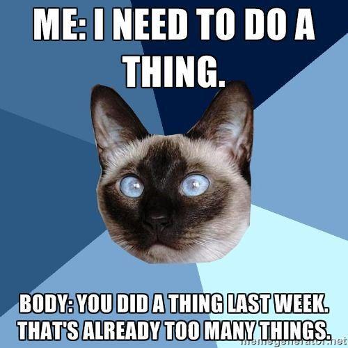 Chronic Illness Cat #chronicfatiguesigns #fibrofatigue