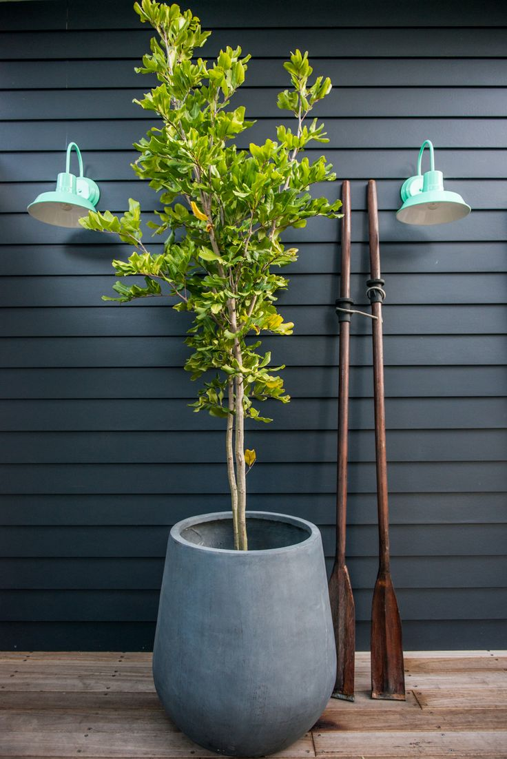 Exterior wall lights from Barn Light Australia. Wall colour is Taubmans Mojo.