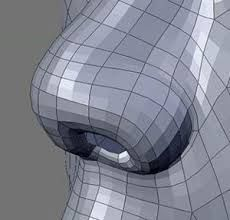 nose topology tutorial - Google Search