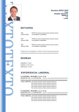 curriculum-vitae-profesionales