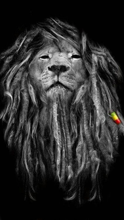 Rasta Music Lion - iPhone 5 wallpaper - http://HDPhoneWallpapers.com