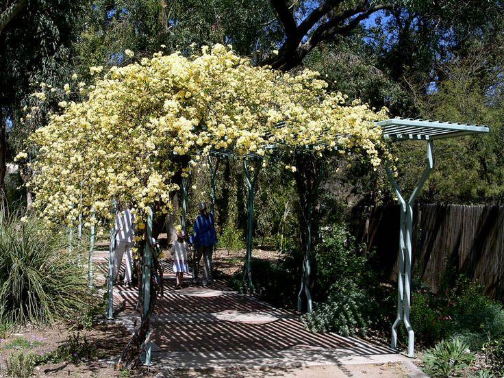 Shade Garden Landscaping Walkways