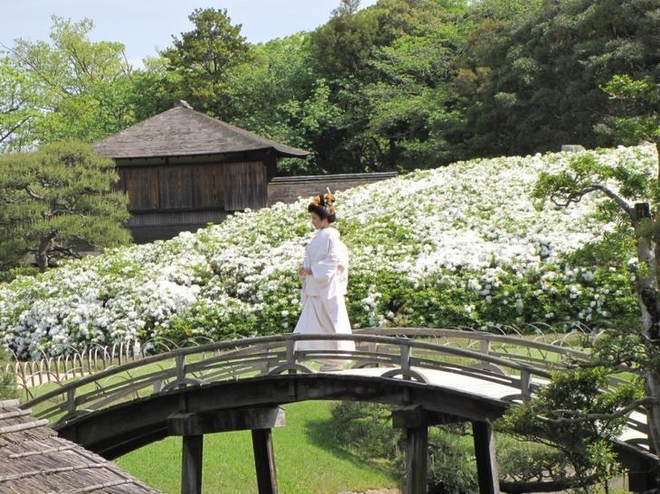 Японский парк Кераку-эн весной. Японка в кимоно на мостике. Фото