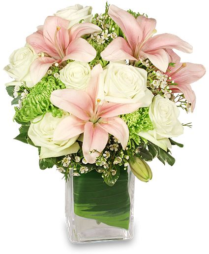 Precious Baby Girl Flower Arrangement With Pale Pink Lilies, White  Waxflower, And Pale Green