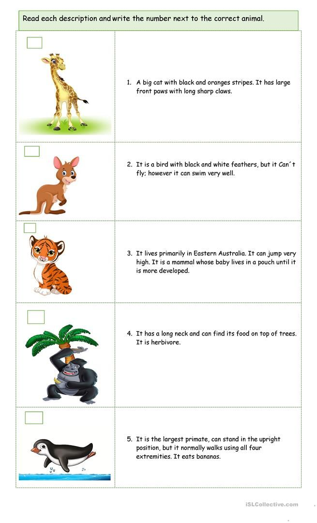A Trip In The Zoo Flashcards For Kids Writing Games For Kids Zoo The monkey039s paw worksheet