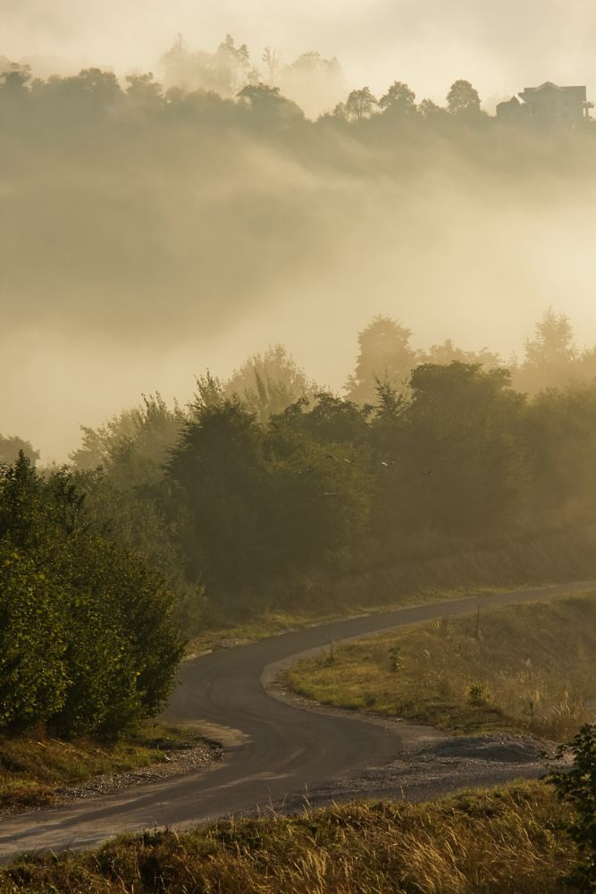 Road to fog by Comsa Bogdan