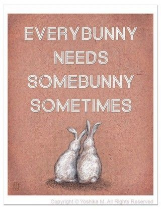 everybunny . . .: Rabbit, Words Of Wisdom, Books Jackets, Inspiration, Quotes, Easter Bunnies, Everybunni, Dean Martin, Easterbunni