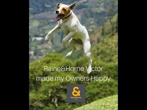 PROPERTY  ON THE SOUTH COAST IS BEING SOLD BY RAINE&HORNE REAL ESTATE VI...