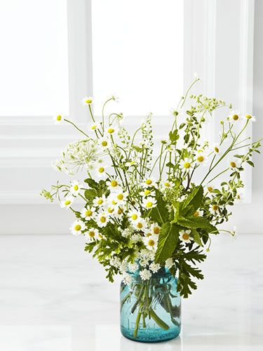 A simple and sweet flower arrangement with chamomile, Queen Anne's lace, and mint.