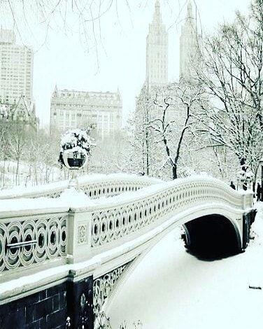 Reposting @me_and_mypixiehair: Que bonita eres, NY💜🎄 . . . #christmas #holidays #tistheseason #holiday #winter #instagood #happyholidays #elves #lights #presents #gifts #gift #tree #decorations #ornaments #carols #santa #santaclaus #christmas2017 #photooftheday #love #xmas #red #green #christmastree #family #jolly #snow #merrychristmas