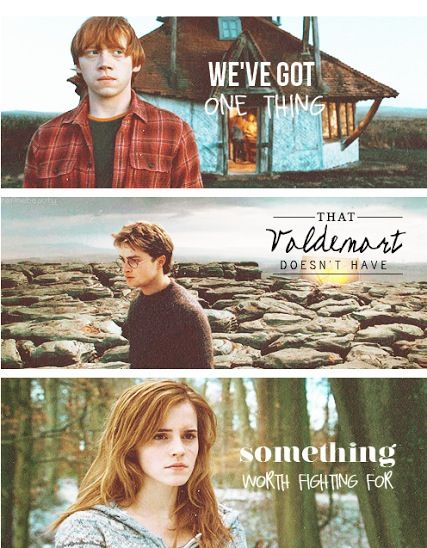 """We've got one thing that Voldemort doesn't have something worth fighting for."" - Harry Potter"