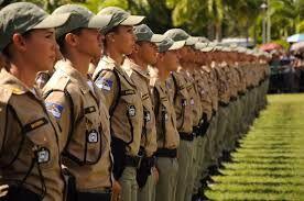 Taís Paranhos: Companhias Independentes de Polícia de Tamandaré e...