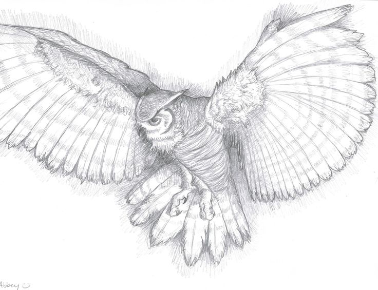 Owl tattoo idea, this is really pretty. Description from pinterest.com. I searched for this on bing.com/images