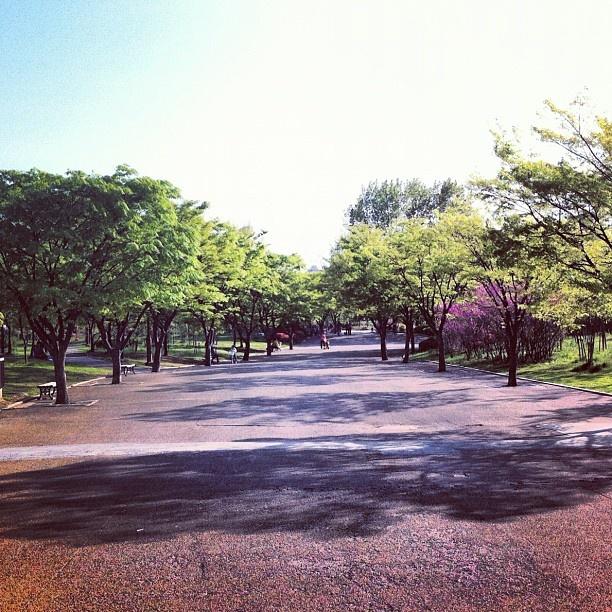 Visit Bupyeongpark - Incheon, Korea, one more time.