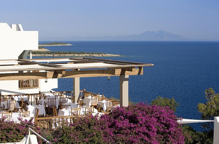 Club Med Bodrum Palmiye