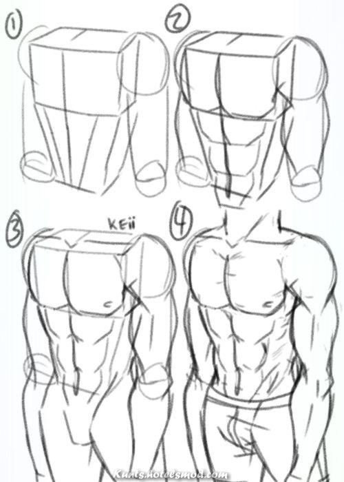 Atemberaubende In diesem Referenzhandbuch versiert Sie, wie man vereinen männlichen Leib zeic…