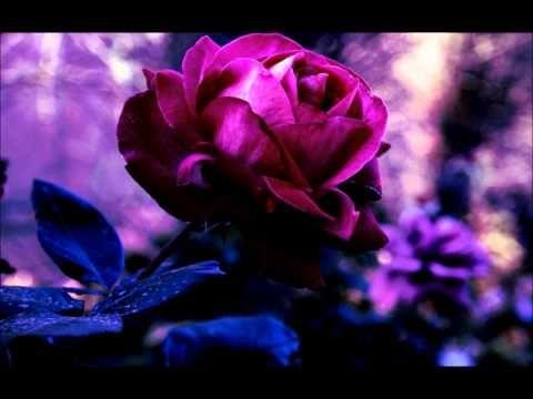 Meditace očištění od minulosti a procítění sebelásky - YouTube
