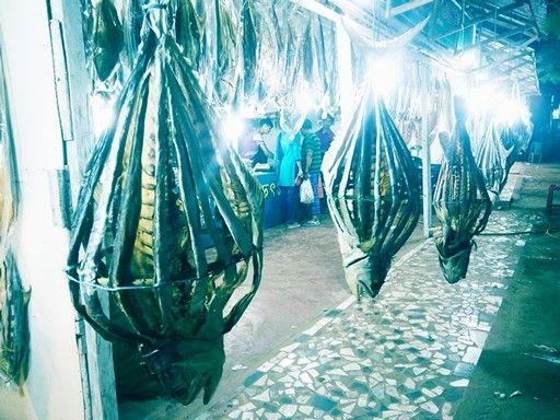 Dry fish in Cox's Bazar, Bangladesh