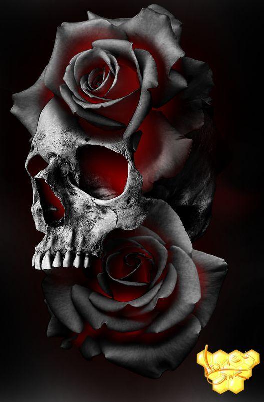 Projet de tatouage Rose Scull. Projet de crâne rose – images – #image …   – Perfekte Tätowierungsmodelle