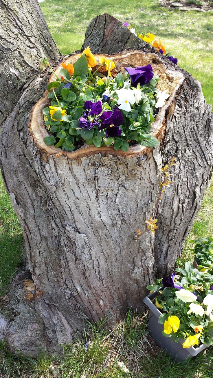 393 best images about reuse recycle trees on pinterest for Upcycled tree stumps