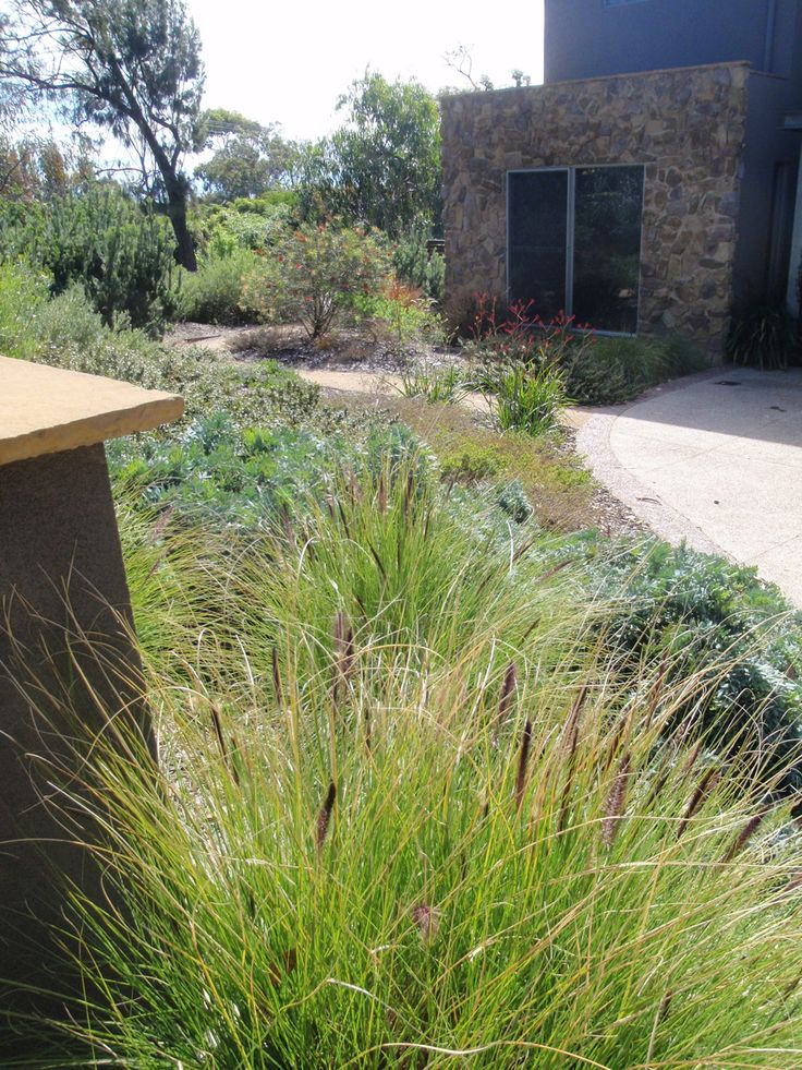 Grasses and low plants, materials, curves path, stone