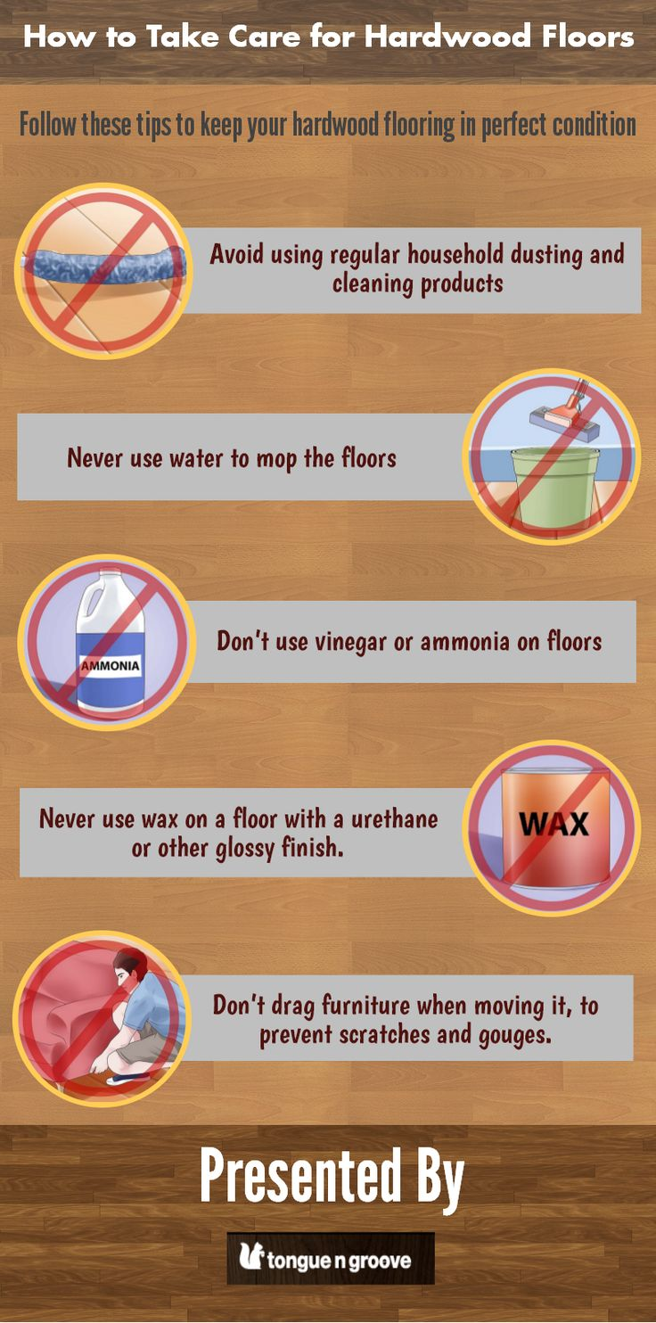 Hardwood Floors gives an elegant look to your home but you have to maintain that look for longer durability. This infographic depicts some tips for maintaining hardwood floors.