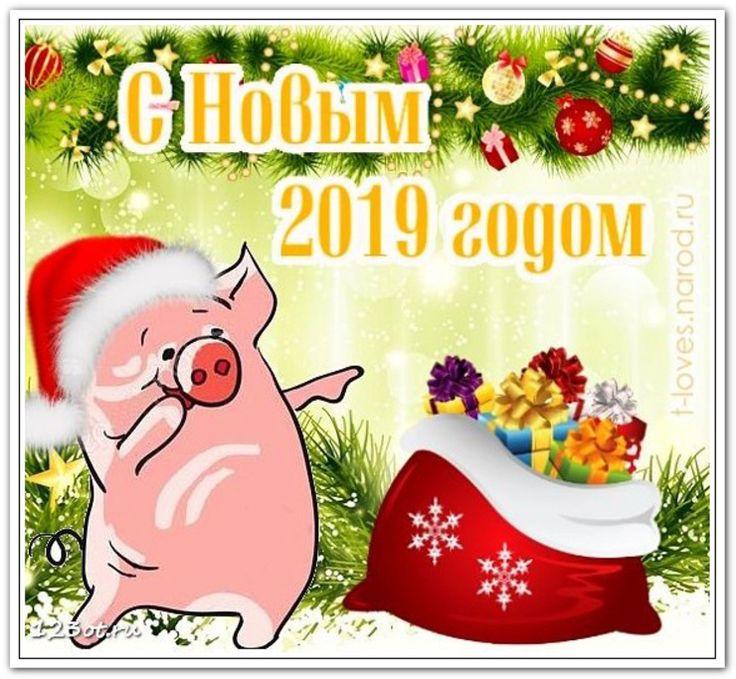 сверху поздравительная открытка год свиньи зрители идеологически