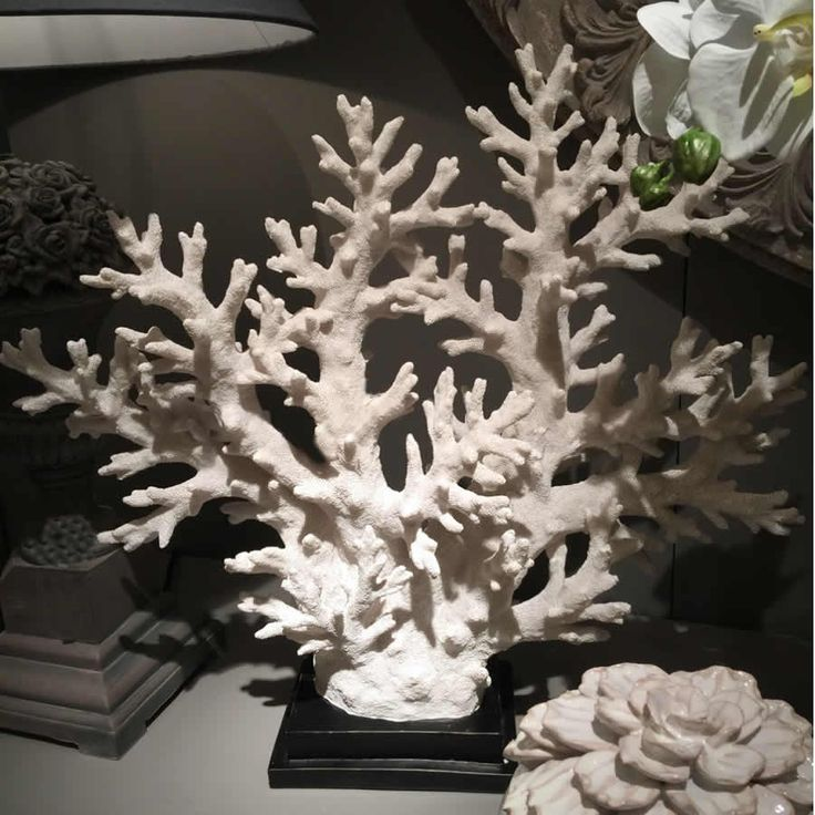 White coral on stand large coral sculpture
