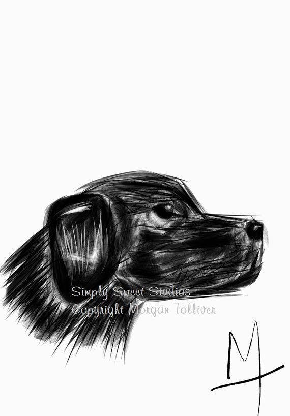 Fine Art Drawing Dog Signed Print Mans By