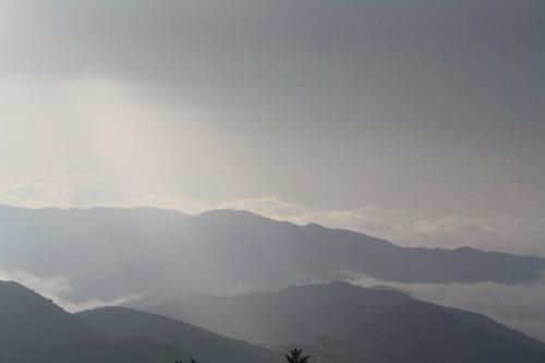 While Alighting from Gurdum basecamp... Trekking in Sandakphu...