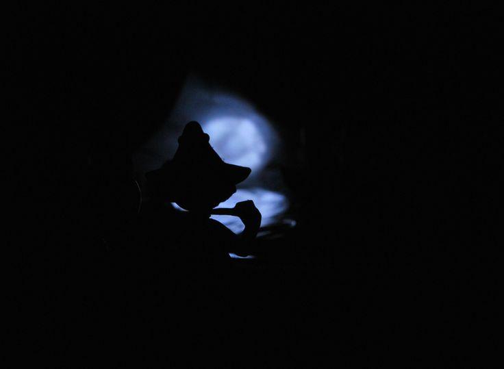 Snusmumriken, Nuuskamuikkunen