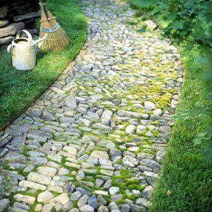 Mossy rock path
