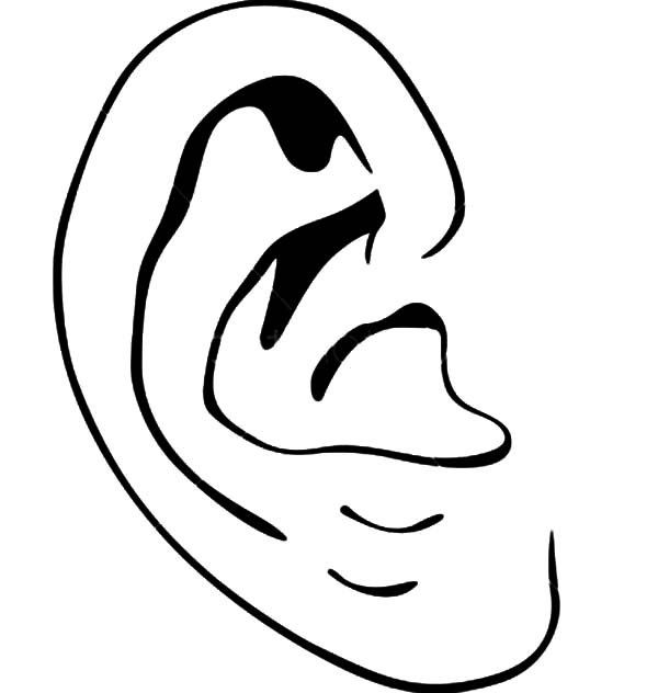 Ear Coloring Pages Di 2020