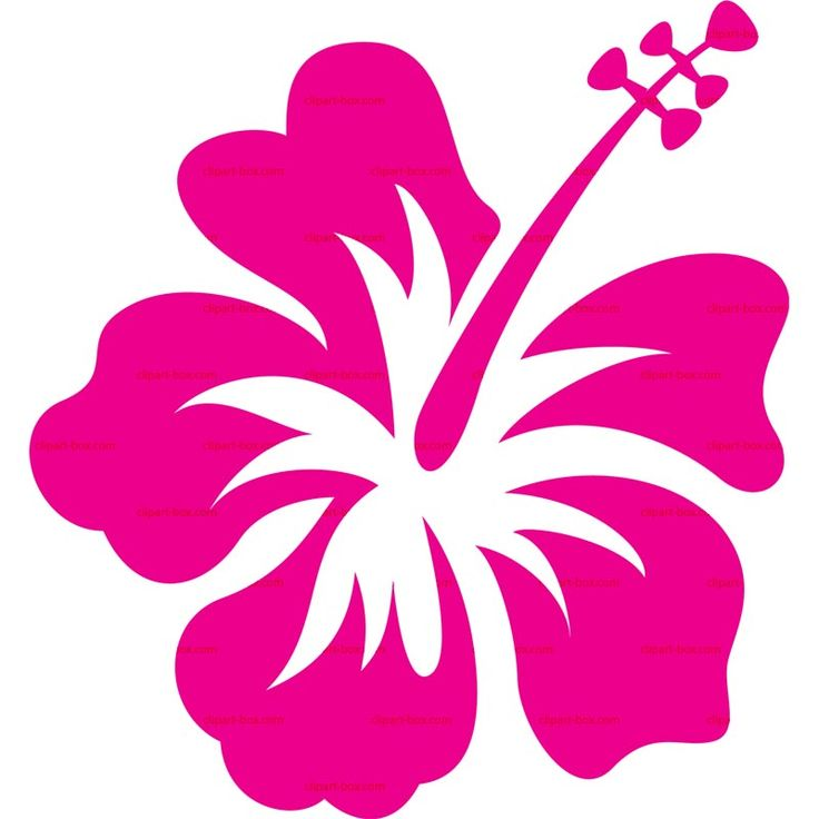 CLIPART HIBISCUS | Royalty free vector design - ClipArt ...