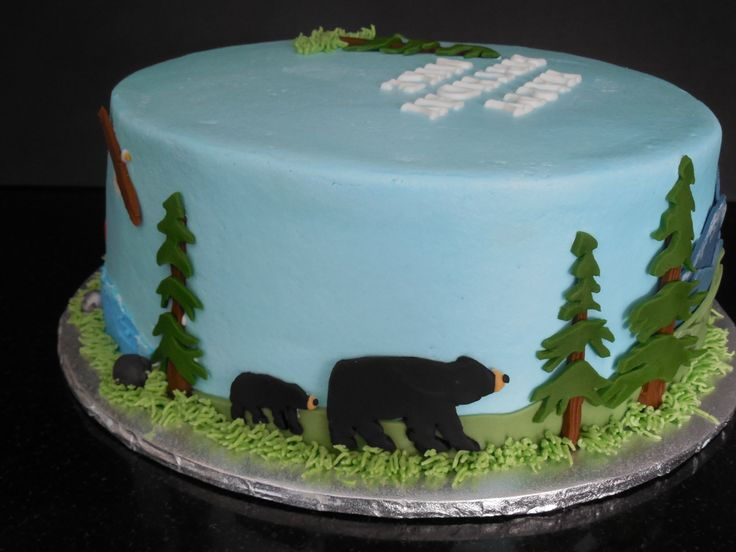 Northwest Tales Birthday Cake A Cake for an avid outdoorsman. Some snowcapped mountains.