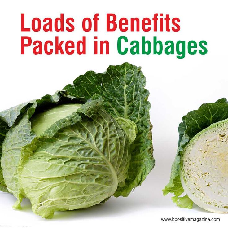 Check out Reasons to Eat More Cabbage - Its packed with Amazing Health Benefits