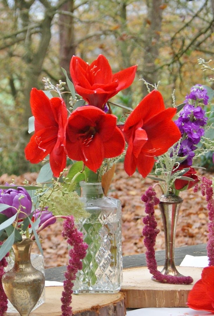 Woodland wedding photoshoot with eclectic mix of reclaimed containers for table centres. Red amaryllis, red roses, purple stock, purple statice, purple tulips, white ammi, red alstroemeria, mimosa, seeded eucalyptus, and trailing red amaranthus. | Florissimo - Flowers for weddings, events and businesses in Shropshire and beyond