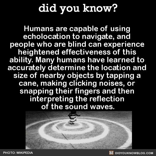 Humans are capable of using echolocation to navigate, and people who are blind…