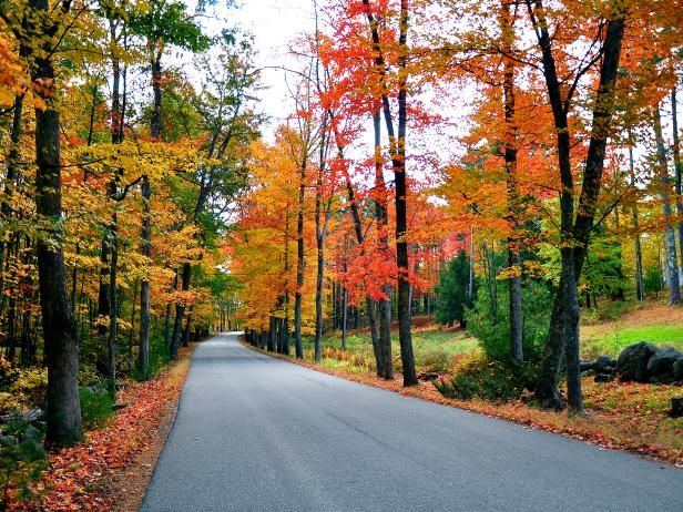 Drive through New England's scenic country roads on a fall foliage road trip adventure.