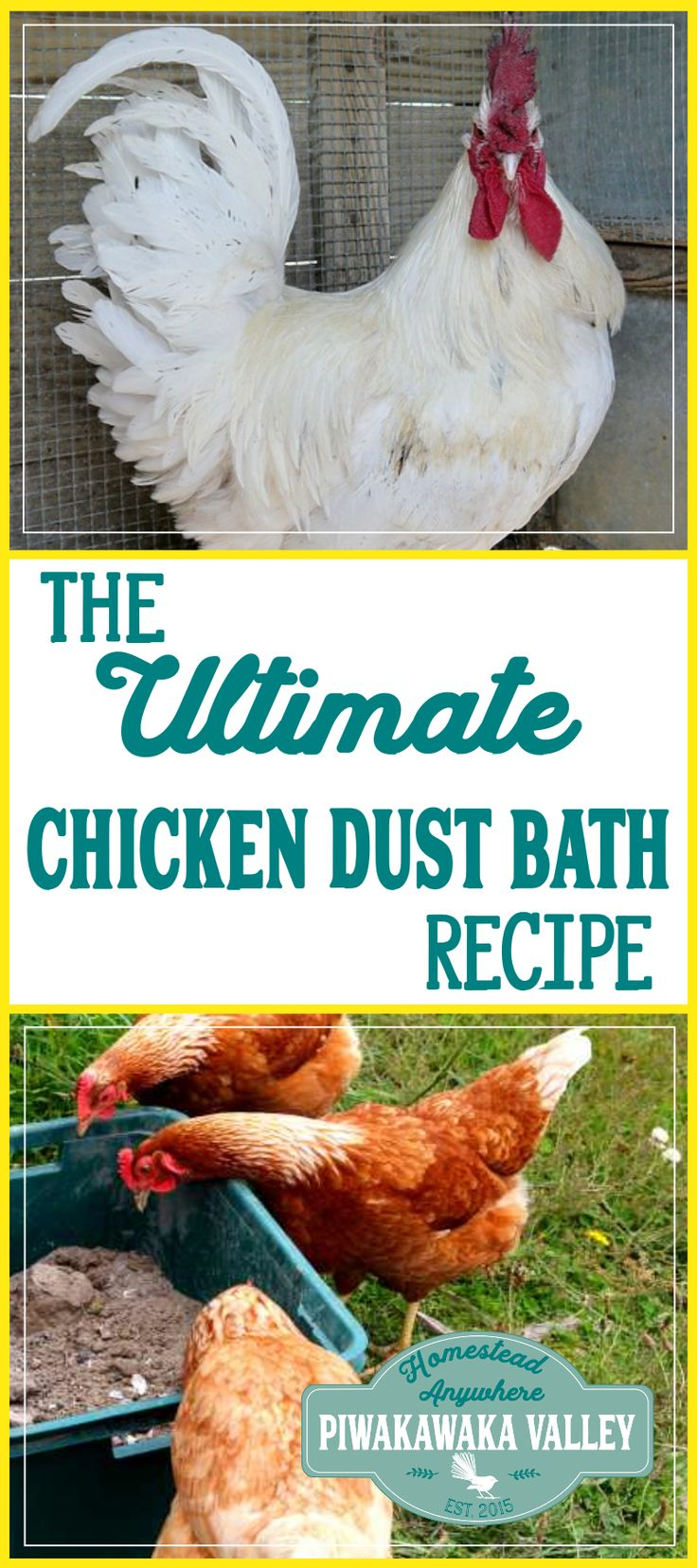 762 Best Chickens Images On Pinterest Chicken Coops Backyard Chickens And Chicken Roost