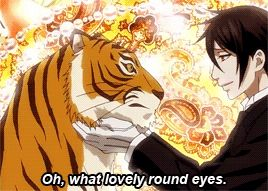 Sebastian's love for cats seems too legit to quit :)