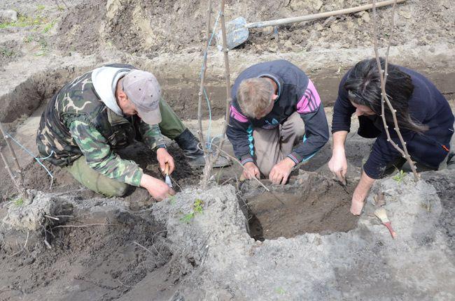 Szenzációs leletek a tatárjáráskori brutális tömeggyilkosság helyszínén   baon.hu   Kultúra   Bács-Kiskun megyei hírek