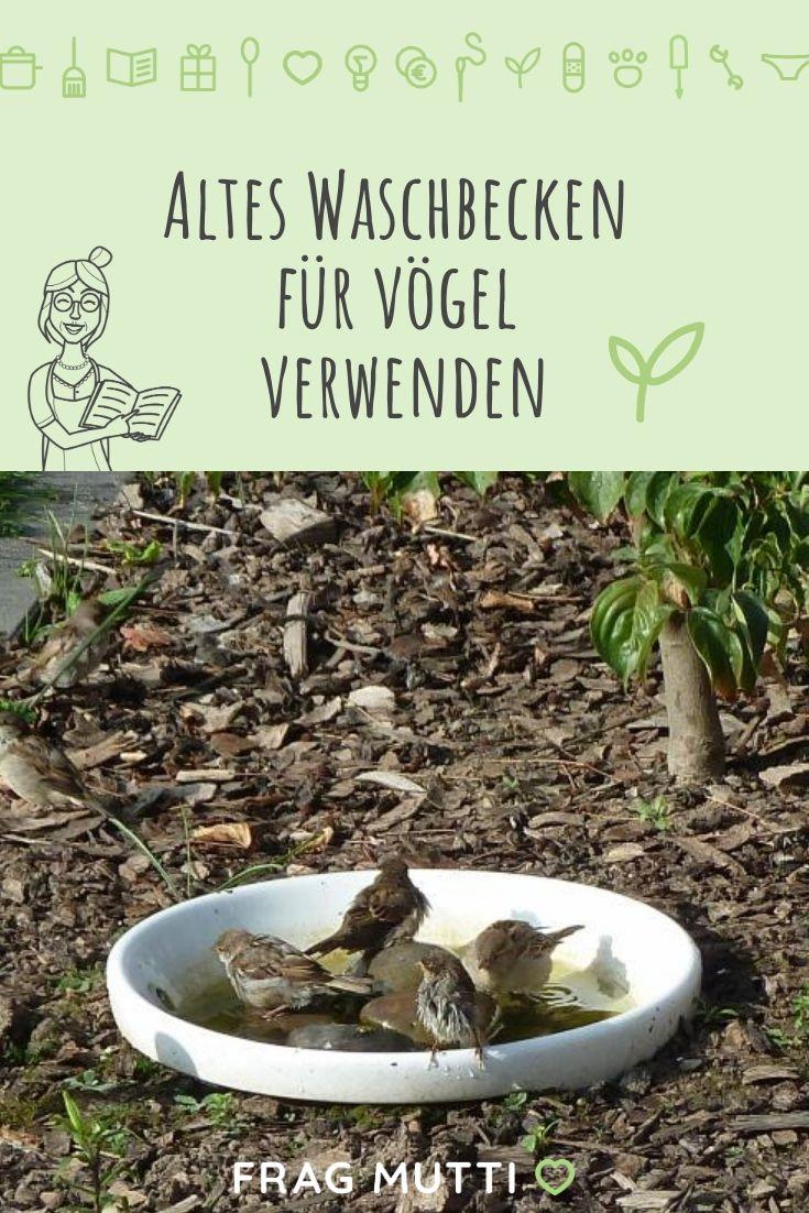 Waschbecken Als Vogelbad Und Vogeltranke Frag Mutti Altes Waschbecken Waschbecken Garten Waschbecken