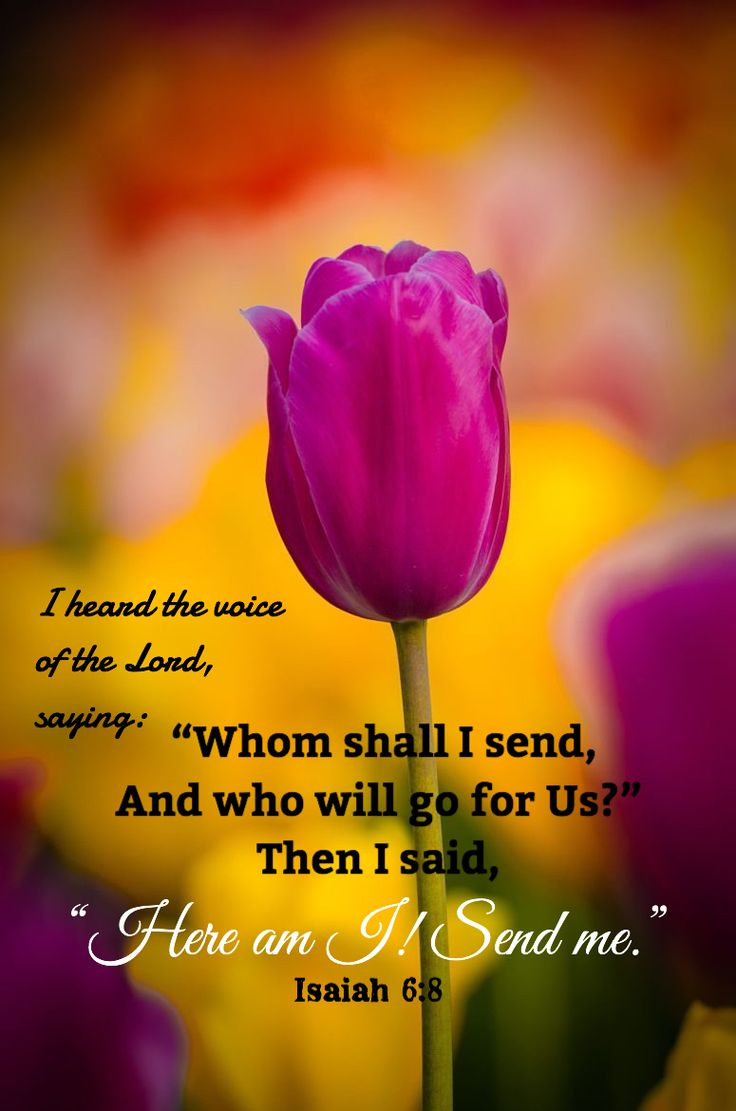 """Isaiah 6:7,8 (1611 KJV !!!!) """" And he laid it upon my mouth, and said, Lo, this has touch thy lips; and thy iniquity is taken away, and they sin is purged."""" (8) """" Also I heard the voice of the Lord, saying, Whom shall I send, and who will go for us? Then said I, Here am I; send me."""" BEFORE SERVING GOD YOUR SINS MUST BE PURGED (OR CLEANED) !!!! ONCE YOUR HEART IS PURE, THAN GOD CAN US YOU !!!!"""