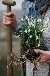 think spring: